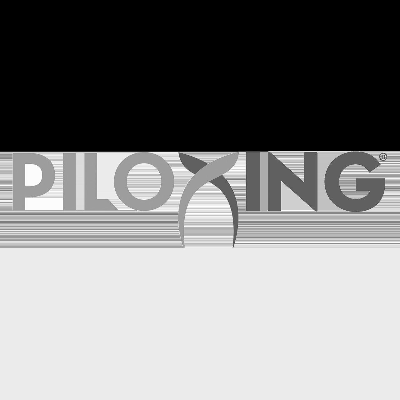 Logo Piloxing
